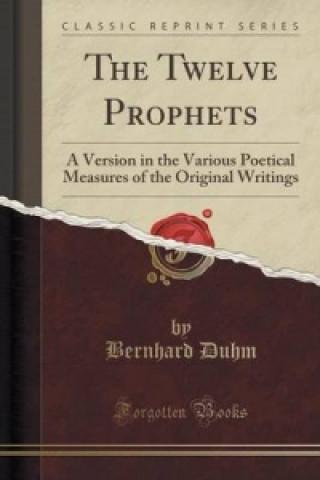 Twelve Prophets