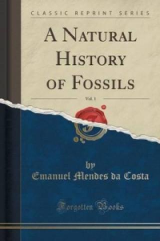 Natural History of Fossils, Vol. 1 (Classic Reprint)