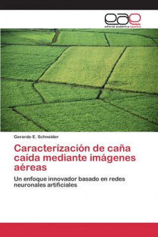 Könyv Caracterizacion de Cana Caida Mediante Imagenes Aereas Schneider Gerardo E