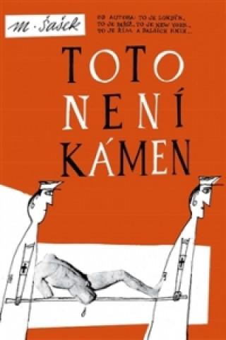 Könyv Toto není kámen Miroslav Šašek