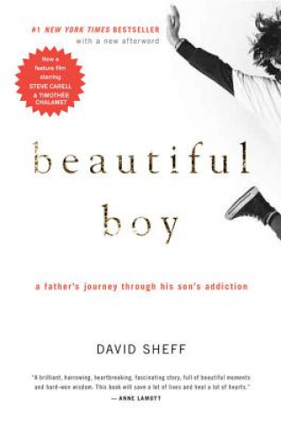 Carte Beautiful Boy David Sheff