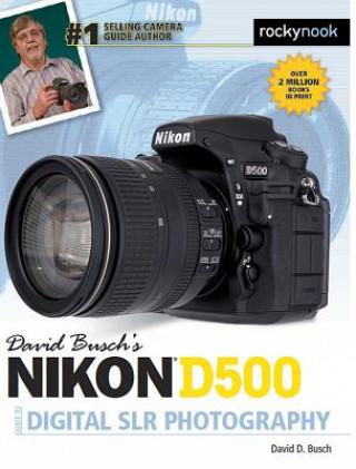 Könyv David Busch s Nikon D500 Guide to Digital Photography David D. Busch