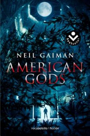 Könyv American Gods Neil Gaiman