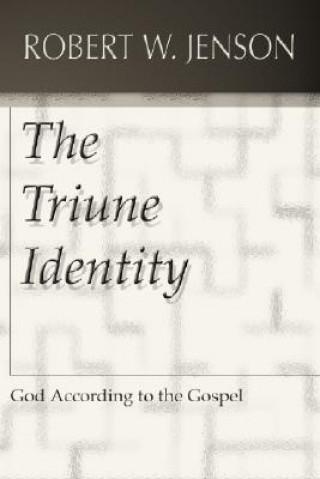 The Triune Identity: God According to the Gospel