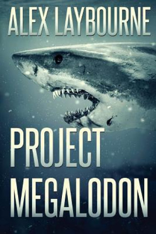 Poject Megalodon