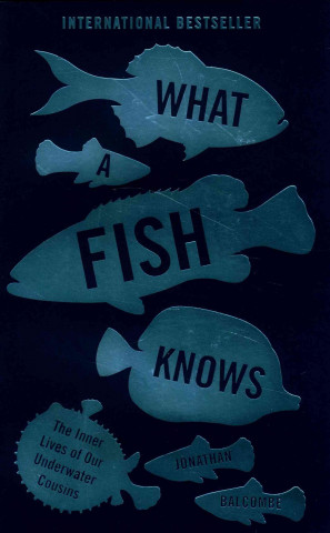 What a Fish Knows