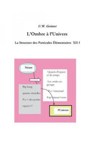 Kniha L'Ombre a l'Univers Uwe Geitner