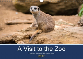 A Visit to the Zoo (Wall Calendar 2017 DIN A3 Landscape)