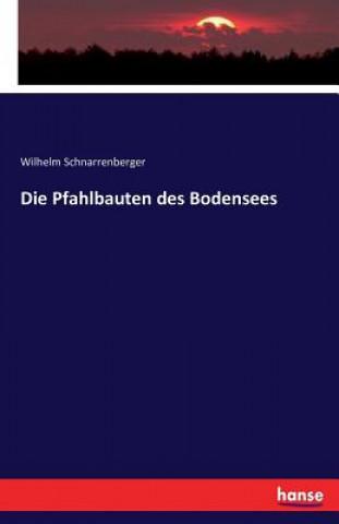 Carte Pfahlbauten des Bodensees Wilhelm Schnarrenberger