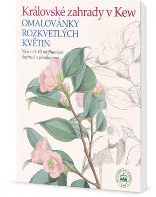 Královské zahrady v Kew - Omalovánky rozkvetlých květin