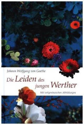 Kniha Die Leiden des jungen Werther Johann Wolfgang von Goethe
