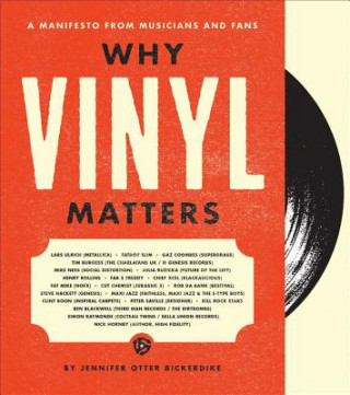 Why Vinyl Matters