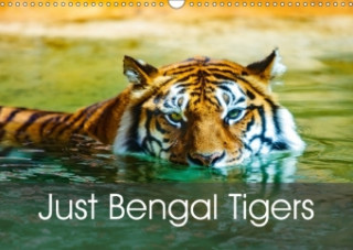 Just Bengal Tigers (Wall Calendar 2018 DIN A3 Landscape)