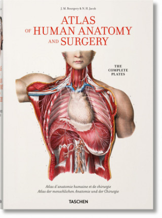 Kniha Bourgery. Atlas of Human Anatomy and Surgery Jean-Marie Le Minor