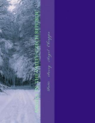 Kniha Angels in the Valley-Czech Republic Patti Sassy Angel Chiappa