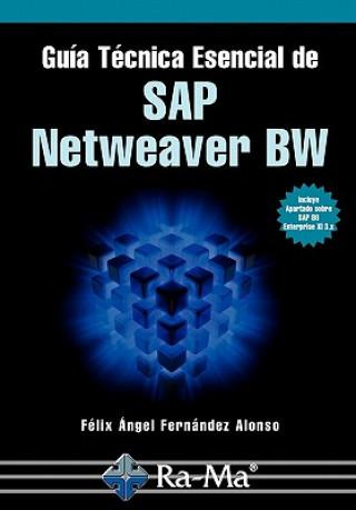 Carte Guía Técnica Esencial de SAP Netweaver BW Sr Felix Angel Fernandez Alonso