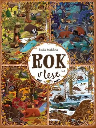 Könyv Rok v lese Emilia Dziubaková