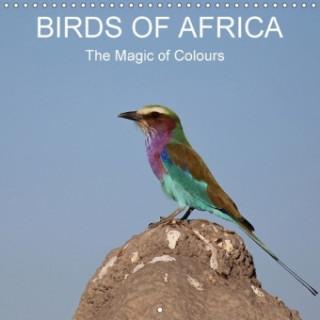 Birds of Africa 2018