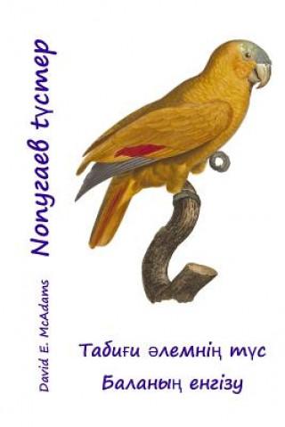 Kniha  David E McAdams