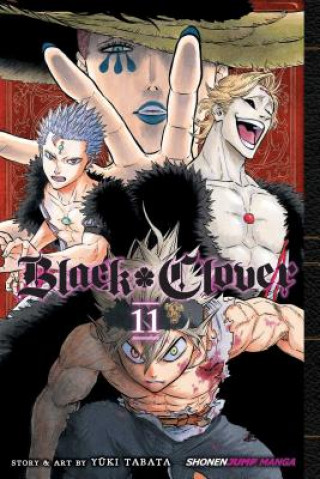 Black Clover, Vol. 11
