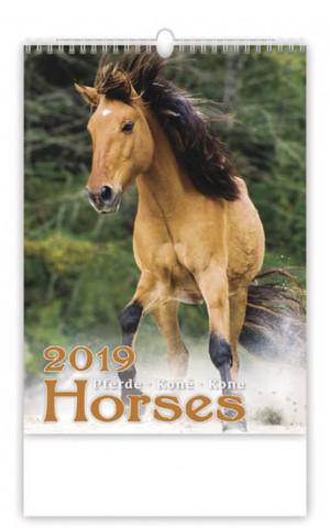 Koně - nástěnný kalendář 2019