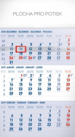 3 mesačný štandard modrý - nástenný kalendár 2019