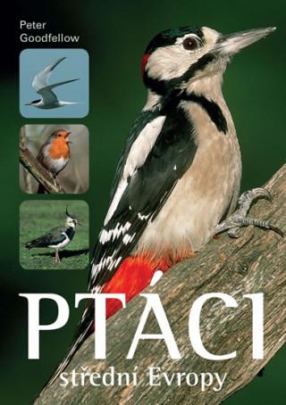 Ptáci střední Evropy