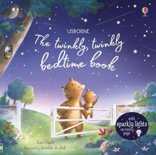 Twinkly Twinkly Bedtime Book